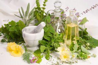 Βότανα, μυστικά και θεραπείες