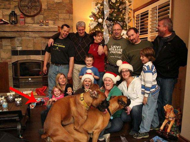 Η ευτυχία των Χριστουγέννων