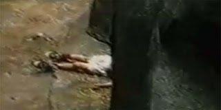Όταν η φύση προνοεί – Δείτε τι έκανε ένας γορίλας όταν έπεσε στο κλουβί του ένα παιδάκι