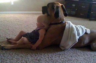 Οι καλύτεροι φίλοι των παιδιών