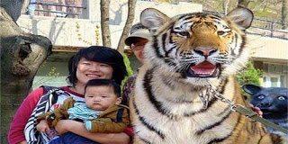 Όλα τα παράξενα στην Κίνα (pics)
