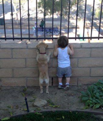 Οι καλύτεροι φίλοι των παιδιών 10