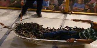 Σοκ! Μπήκε στην μπανιερά μαζί με 195 φίδια
