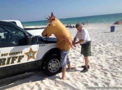Οι πιο αστείες καλοκαιρινές φωτογραφίες 4