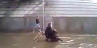 Σκύλος σπρώχνει το αναπηρικό καροτσάκι του αφεντικού του