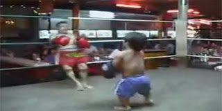 Video – Δύο νάνοι αγωνίζονται στο Muay Thai