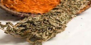 Αγριμόνιο – Το τσάι που θεραπεύει αλλά κάνεις δεν το γνωρίζει