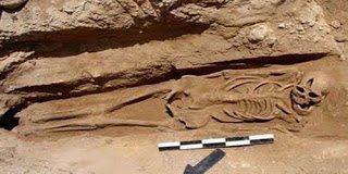 Αποκάλυψη – Στην αρχαιότητα υπήρχαν γίγαντες  -  Όλα τα ντοκουμέντα