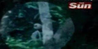 Σοκ ! Βιντεοσκοπήθηκε αληθινός εξωγήινος;