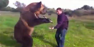 Δείτε τι μπορεί να κάνει η πιο έξυπνη αρκούδα του κόσμου