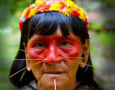 το ιδιαίτερο piercing της φυλής των Matsés και Matis 6