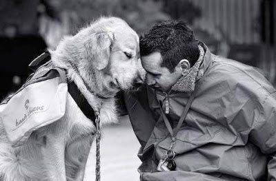 Σκύλοι, οι καλύτεροι φίλοι του ανθρώπου σε συγκινητικές στιγμές 2