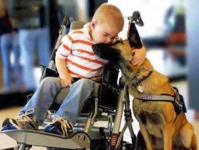 Σκύλοι, οι καλύτεροι φίλοι του ανθρώπου σε συγκινητικές στιγμές 3