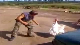 Ξεκαρδιστικό video – Έκανε τον μ@γκα και τις έφαγε από μια γαλοπούλα