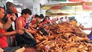 Έλεος! Ανοίγει ο δρόμος για σκυλίσιο κρέας στα σούπερ μάρκετ της Ελλάδας