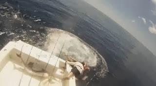 Το γιγαντιαίο ψάρι που εμφανίστηκε ξαφνικά και κατατρόπωσε τους ψαράδες (video)