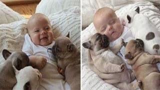 Φωτογραφίες- απόδειξη πως τα σκυλιά είναι οι καλύτεροι φίλοι των παιδιών