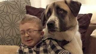 Απίστευτο! Δείτε πως ο σκύλος βοηθάει παιδί με ειδικές ανάγκες (video)