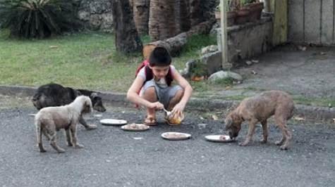 Έπαιρνε τρόφιμα
