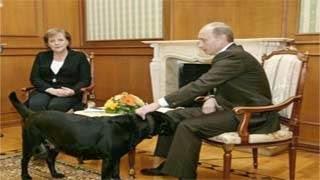 Το κορυφαίο καψόνι του Πούτιν στην Μέρκελ η οποία τρέμει τα σκυλιά