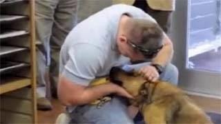 To video που συγκίνησε τους πάντες – Όταν ο σκύλος ξαναβρήκε το αφεντικό του