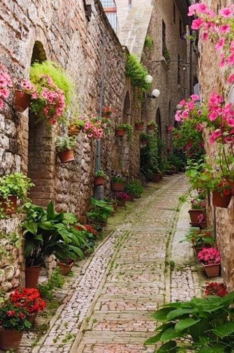 Ζιβερνί, Γαλλία