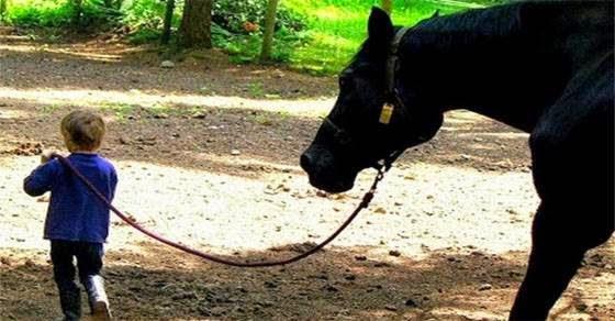 Άλογο συναντά αγοράκι με σύνδρομο