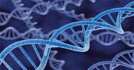 Το Ελληνικό DNA - Ένα μοναδικό φαινόμενο
