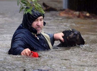Φωτογραφίες από τη διάσωση ζώων από τις πλημμύρες στη Σερβία.
