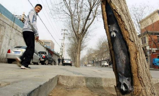 ζωγραφίζει τις τρύπες δέντρων1
