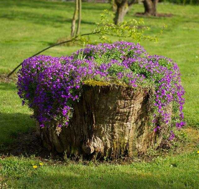 γλάστρες από κορμούς δέντρων2