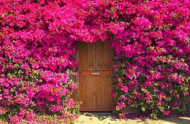 πόρτες ανά τον κόσμο που θυμίζουν ταινία φαντασίας7