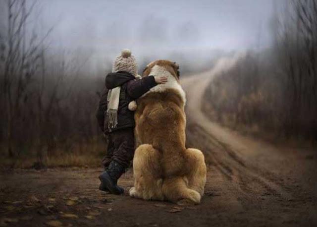 σκυλιά και βρέφη6