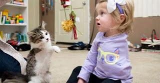 2χρονη που έχασε το χέρι της υιοθέτησε γατάκι που έχασε το πόδι